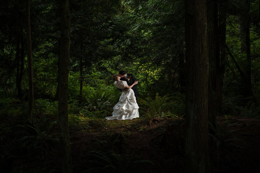 Michael Curtis Photography  |  Arlington, WA Wedding Photographer