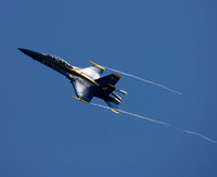 Blue Angels 2014